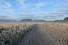 Морозные грязная улица и поле Стоковое Изображение