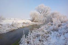 Морозные деревья зимы на сельской местности стоковое изображение