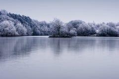 Морозные деревья зимы landscape с отражением в озере Стоковые Фотографии RF
