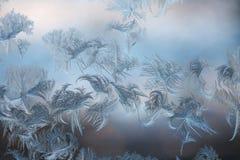 Морозные картины льда на окне Стоковое Изображение RF