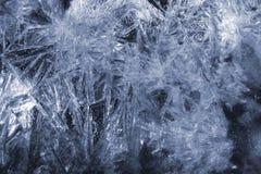 морозные картины стоковые изображения rf