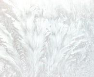 морозные картины Стоковые Изображения