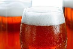 Морозные стекла холодного пива пенятся, предусматриванный с падениями, крупный план На белизне Стоковое Изображение RF