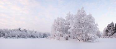 Морозный вечер Стоковое фото RF