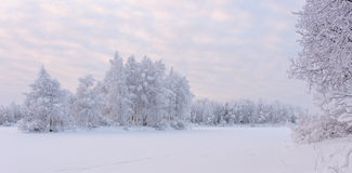Морозный вечер Стоковые Фотографии RF