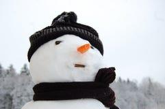 морозный портрет Стоковое Фото