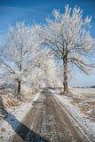 Морозный путь Стоковые Изображения