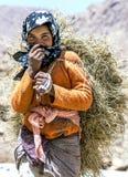 Морокканская девушка нося нагрузку сена в ущелье Todra на Tinerhir в Марокко Стоковые Изображения