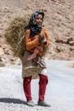 Морокканская девушка нося нагрузку сена в ущелье Todra на Tinerhir в Марокко Стоковая Фотография