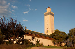 морокканская мечеть Стоковые Фотографии RF