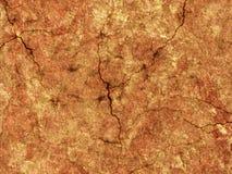 морокканская стена Стоковая Фотография
