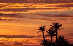 Морокканский заход солнца - около Marrakesh Стоковые Изображения RF