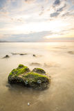 Морская водоросль к бесконечному Стоковое Изображение