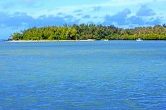 морская водоросль пляжа ile du пропила в людях трясет Стоковое Фото