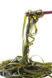 морская водоросль wakame Стоковые Изображения RF