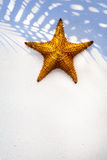 Морская звезда раковины искусства на предпосылке песка Стоковое Изображение