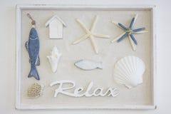 Морская коробка натюрморта стоковая фотография rf