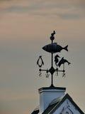 Морская лопасть Стоковые Изображения