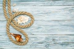 Морские веревочка и морские звёзды на белых досках Стоковое Изображение