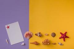 Морские вещи на дне Стоковые Фотографии RF