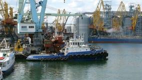 Морские гаван краны, и индустриальная зона во фронте груза порта моря Одессы коммерчески в Украине сток-видео