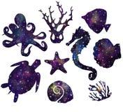 Морские животные, океан, космос, звезды иллюстрация вектора