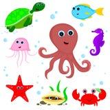 Морские животные Стоковые Фото