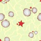 Морские звезды и seashells на песочном дне моря Стоковая Фотография