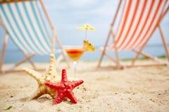 Морские звезды на песчаном пляже Стоковые Изображения