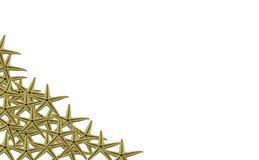 Морские звезды обрамляют на белизне Стоковые Изображения