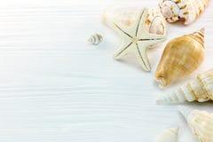 Морские звёзды с красочными seashells на поверхности деревянного стола Стоковое Изображение RF
