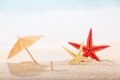 Морские звёзды в песке под зонтиком с знаком Стоковая Фотография