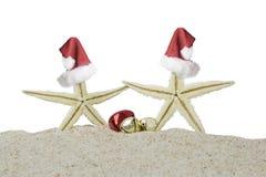 2 морские звёзды и колокола рождества Стоковые Изображения RF