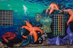 Морские звёзды и краб стоковое фото