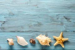 Морские звёзды и seashell на голубых досках Стоковая Фотография