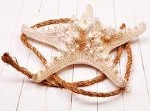 Морские звёзды на белом деревянном столе предпосылки Стоковая Фотография