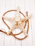 Морские звёзды на белом деревянном столе предпосылки Стоковое фото RF