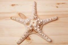 Морские звёзды на деревянном столе Стоковое Изображение
