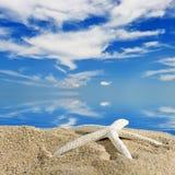 Морские звёзды цвета на песчаном пляже, концепции перемещения Стоковое Изображение RF