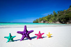 Морские звёзды цвета на песчаном пляже Стоковые Изображения