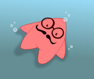 Морские звёзды Стоковое фото RF