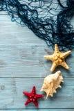 Морские звёзды, seashell и морская сеть Стоковое фото RF