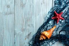 Морские звёзды, seashell и морская сеть Стоковые Изображения