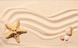 Морские звёзды, seashell scallop и 2 камня на песке пляжа Стоковые Изображения