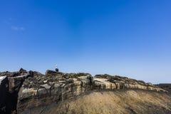 Морские игуаны на утесе лавы Стоковые Изображения