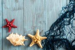 Морские сеть и раковины на голубых досках Стоковые Изображения