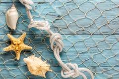 Морские сеть и раковины на голубых досках Стоковое Изображение