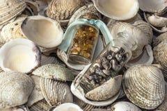 Морские сувениры Стоковые Изображения RF