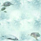 морские черепахи wallpaper живая природа Стоковые Изображения RF
