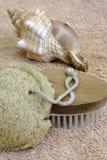 морское мытье Стоковые Изображения